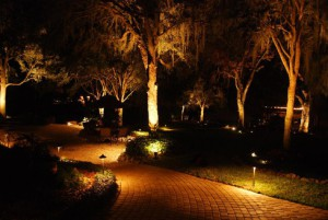 We can design your landscaping lighting system to meet your needs.