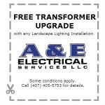 Free Transformer Upgrade coupon